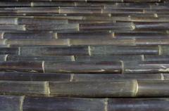 Bambusrohre Und Bambuszaune Conbam Der Bambus Spezialist